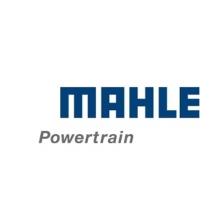 Mahle Powertrain - http://www.mahle-powertrain.com/
